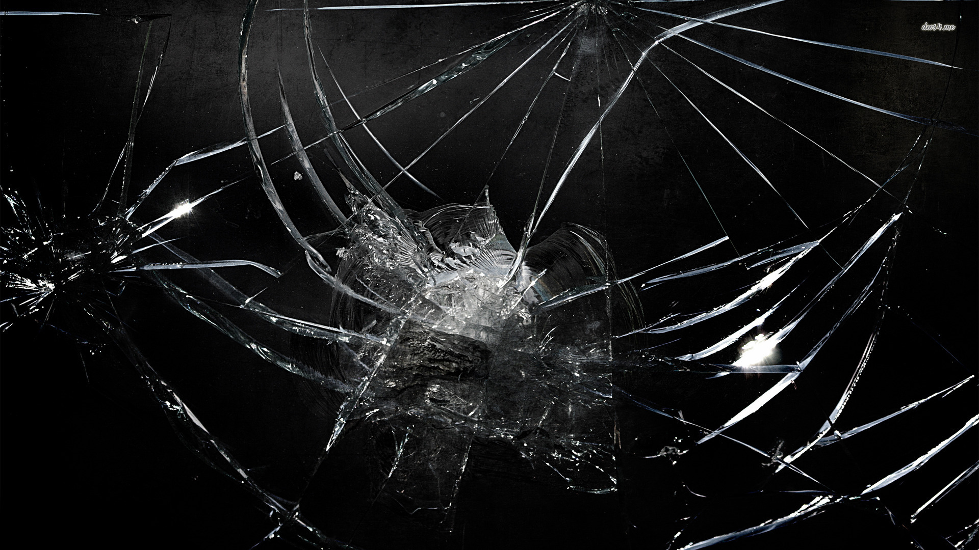 Windshield Replacement Come To You >> services | Windshields in Denver